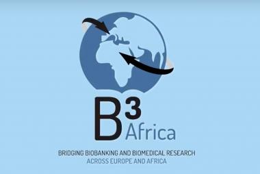 B3 Africa